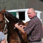 Tierarztpraxis Unewatt